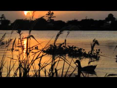 See what a morning - Kristyn Lennox - Easter Song