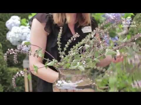 Flower Arranging with Flowers from your Garden with Dalia Brunner & Kristen Silka