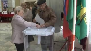 видео Активность российских избирателей