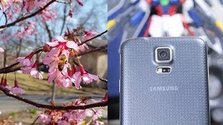 Samsung Galaxy S5 4K Video Test