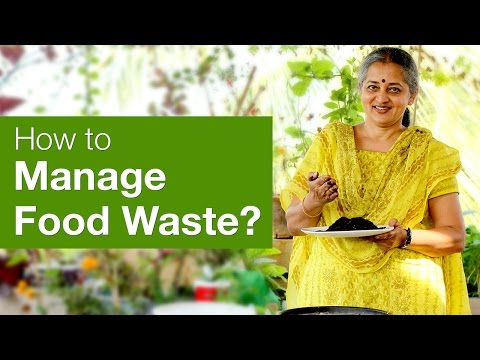 Love Food Waste Waste Management