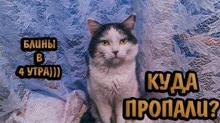 БЛИНЫ В ЧЕТЫРЕ УТРА И ГОРОХОВЫЙ СУП! Котопес)))