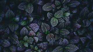 """[SOLD] Mac Miller x Chance the Rapper Type Beat 
