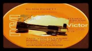 Take Your Pleasure Where You Find It/What Good Is A Lie  Wilson Pickett  1974  (Facciate:2)‎