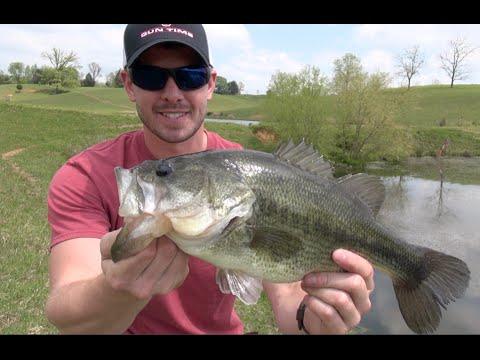 POND BASS FISHING (CATCHING GIANTS)