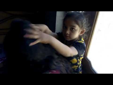 Download Diyan Raniyan...  Song noor jehan  maa with betti