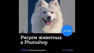 Рисуем животных в Photoshop. Стрим с художником Натальей Каюровой