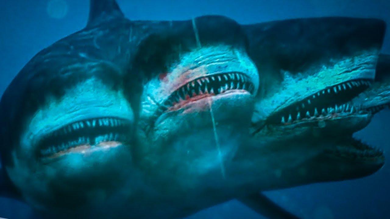 10 Most Rare Species Hidden In The Ocean