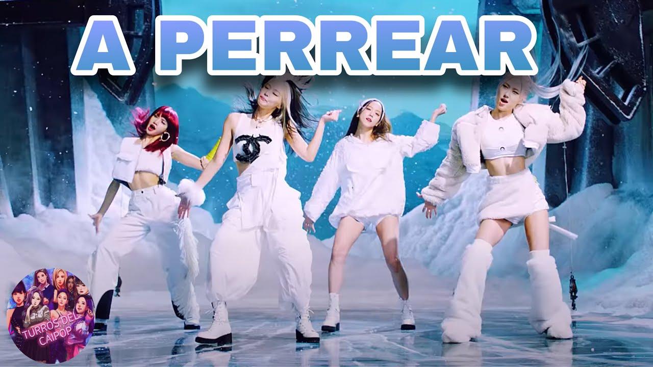 Download BLACKPINK - A PERREAR (Parodia de How You Like That) | Turros del Caipop