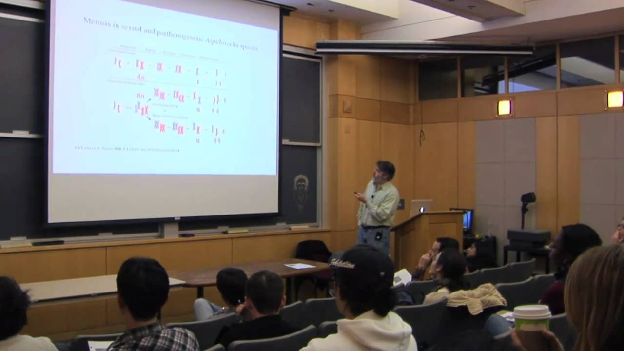 Cb201 Cellular Biology Course At Harvard Medical School Youtube