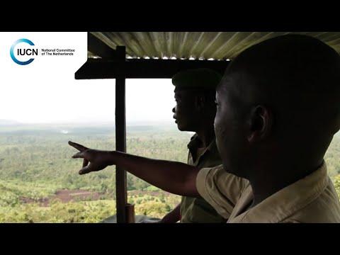 Virunga National Park: Oil, Conservation and Sustainable Development