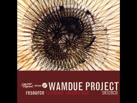 Wamdue Project  In The Back Of Your Mind