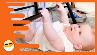 Adorable Babies Doing Funny Things   Cute Baby Videos
