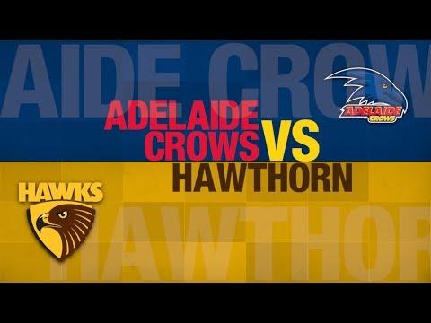 AFL Evolution | Hawks Career | vs Adelaide | Round 14