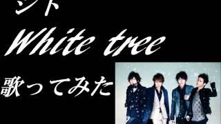 シド White tree 歌ってみた
