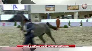 - قناة الشارقة الرياضية مباشر Sharjah Sports Channel Live
