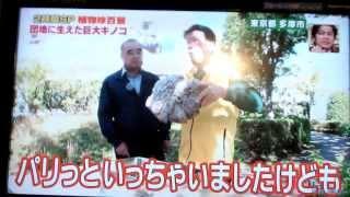 10月23日にTV朝日の人気番組へ投稿したら、25日から台風29号の風雨の...