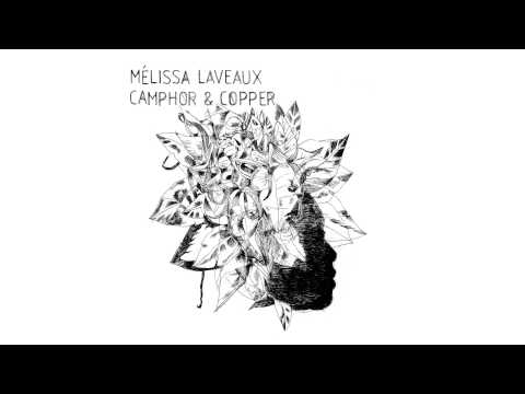 Mélissa Laveaux - Needle In the Hay mp3