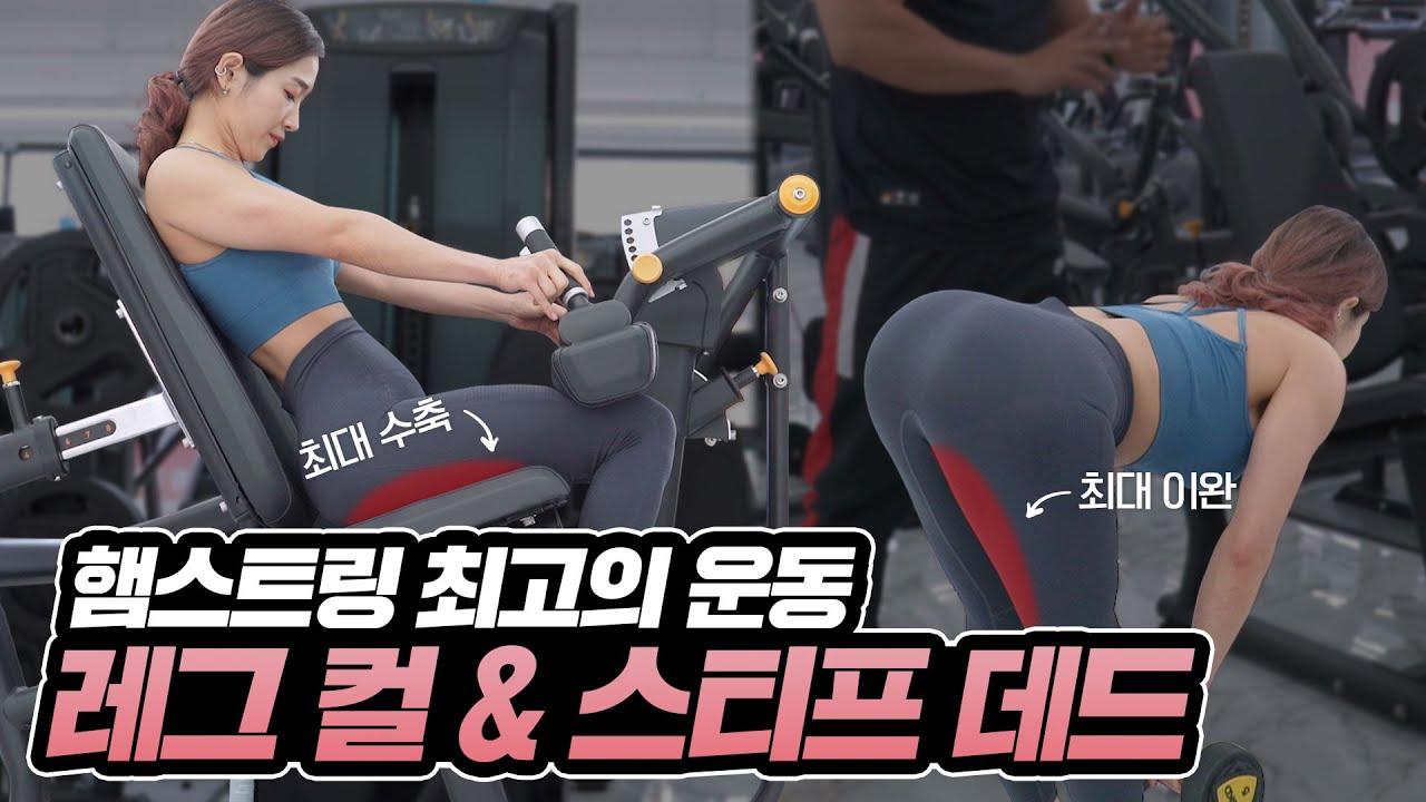 아직도 스쿼트만 하세요? 엉덩이 라인을 책임질 최고의 운동! 레그컬&스티프 데드리프트