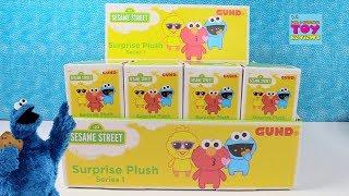 Baixar Sesame Street Surprise Plush Blind Box Opening Toy Review | PSToyReviews