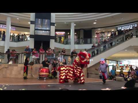 The Best from Chinese Spring Festivel Show at Avenue Center Jacksonville 2017 4K