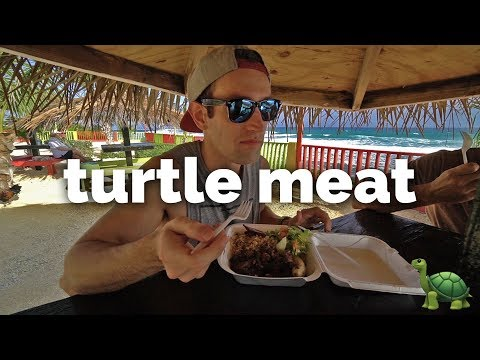 Eating Sea Turtle in Cayman