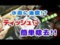 【白メダカ】稚魚水槽に油膜が!?ティッシュで簡単除去!!