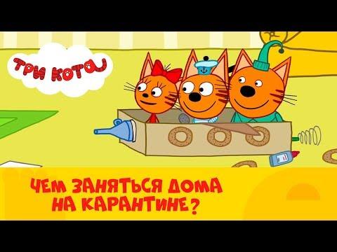 Три кота | Котятки на карантине 🏠 Веселимся дома 🏠 Сборник серий от СТС Kids