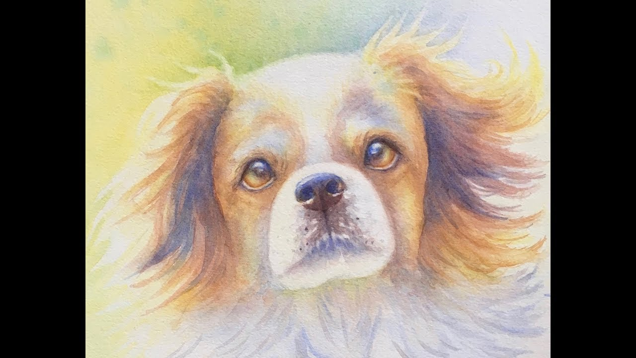 Playful Dog [Watercolour Painting Demo]