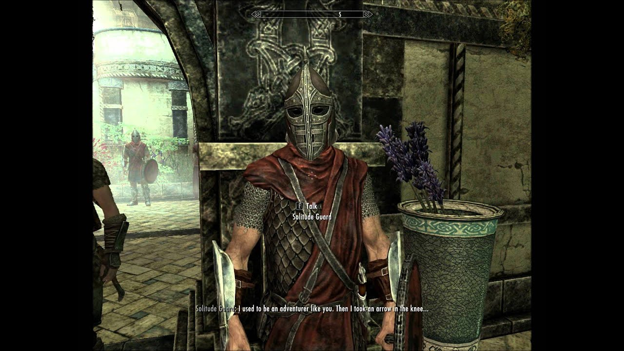 Skyrim: I Used To Be An Adventurer Like You. Then I Took