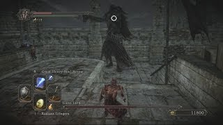 Dark Souls 2 Giant Lord Boss Fight