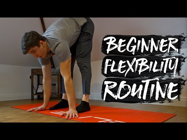 15 Minute Beginner Flexibility Routine! (FOLLOW ALONG)