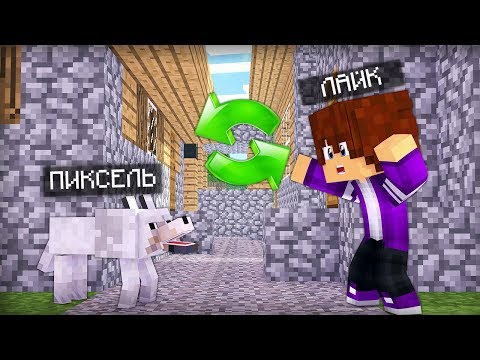 я поменялся телами с лайком! стал настоящей собакой в майнкрафт 100% троллинг ловушка Minecraft