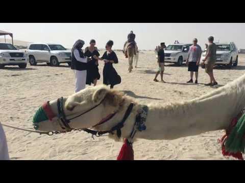 Desert Safari - Qatar April 2017 (S9)