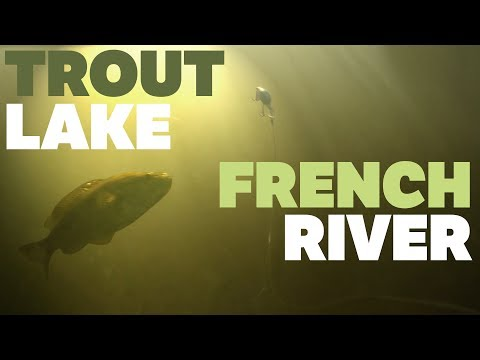 TROUT LAKE FISHING (FRENCH RIVER) - UNDERWATER STRIKES VIDEO
