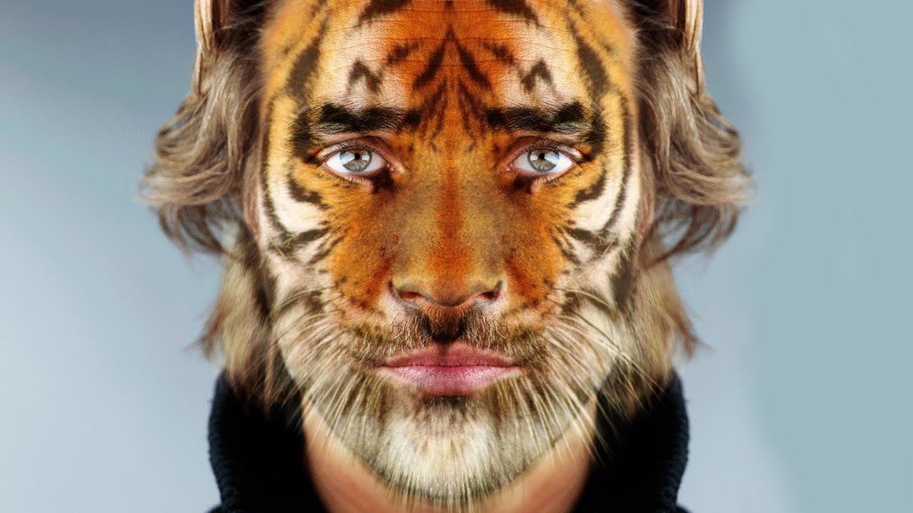 Photoshop Cs6 Tutorial Transform Yourself Into An Animal