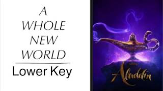 "A Whole New World (Lower Key) [From Walt Disney's ""Aladdin""] [Piano Instrumental Karaoke Track]"