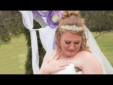 """A Butterfly Lands On Her Wedding Dress – She Burst Into Tears At The """"Message"""" It Brought"""