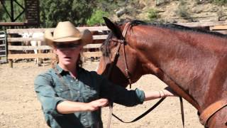 PhilCast - Philmont Ranch Department - 20120709