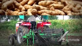 Groundnut Digger Kannada