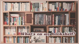 WHAT'S ON MY BOOKSHELF? 책꽂…