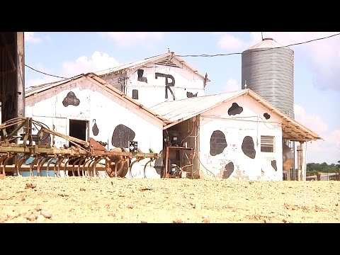 Pine Grove Dairy Continues to Move Forward