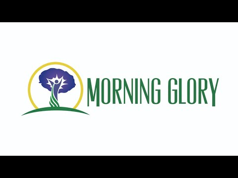 Morning Glory 11/25/20 – Fun Thanksgiving Activities for Kids
