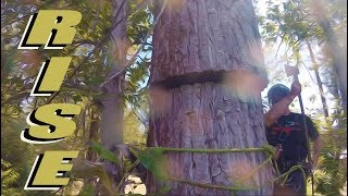 Wood Chipper Eats Entire Tree