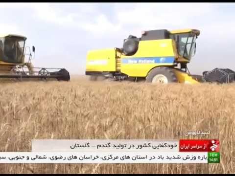 Iran Gonbad-e Kavous county, Mechanized Wheat harvest برداشت مكانيزه گندم شهرستان گنبدكاووس ايران