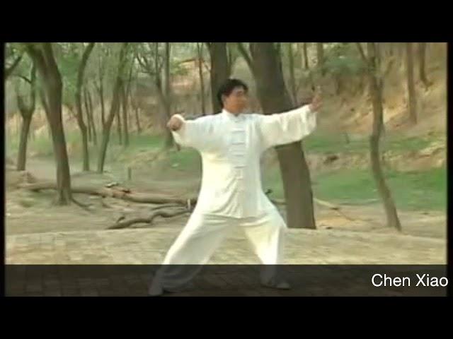 Chen Xiao Xing - Tai Chi style Chen Xinjia Yilu (Chenjiagou)  [陈氏太极拳新架 Taijiquan style Chen]