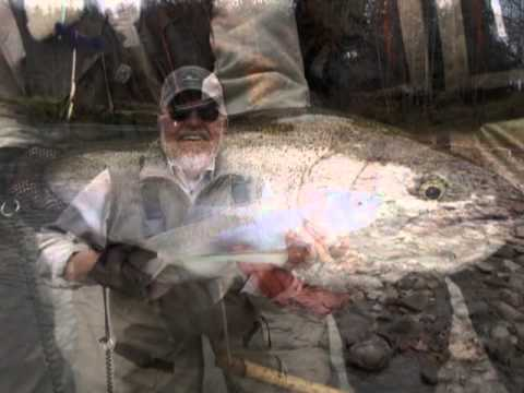 Cattaraugus creek outfitters guided steelhead fishing for Cattaraugus creek fishing report