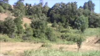 HİLAL KAŞLIM 2017 Video