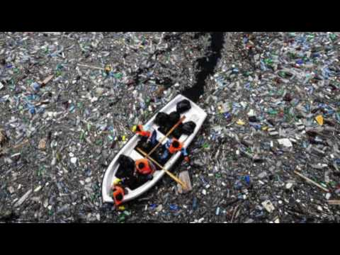 North Pacific Garbage Patch