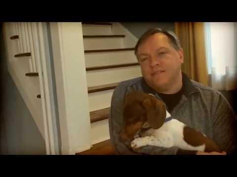 REAL ESTATE TIP: Pet Smells